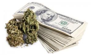 canna money