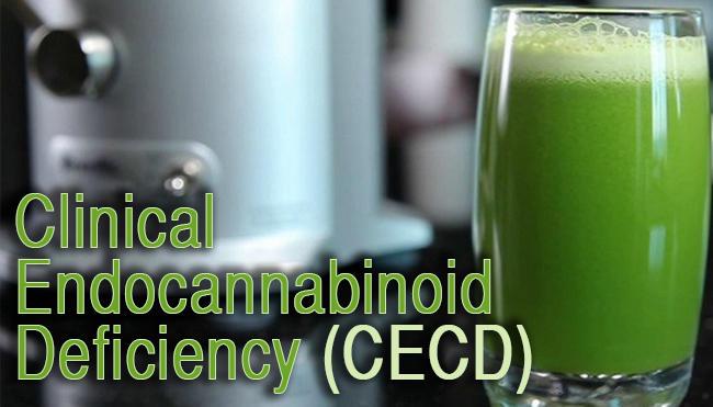 endocannabinoiddeficiencyCECD